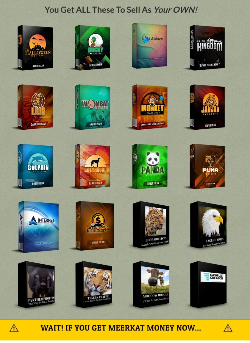 The Ultimate Christmas Bargain Bundle. 42 FE Products from 18 different marketers + 11 upsells included. $1247 value[Brown Bear Bargains]